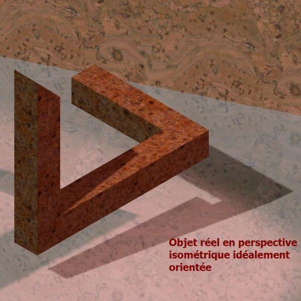 Ilusiones visuales falsas o aprendizaje equivocado.